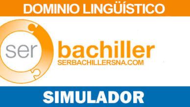 Simulador linguistico ser bachiller