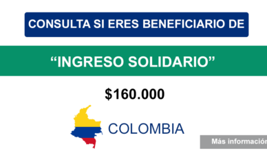 Bono Ingreso Solidario